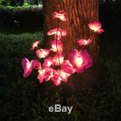 2 PCS Solar Garden Lights Orchid Flowers Stake Lamp For Yard Outdoor Patio Decor