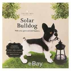 Solar Garden Bulldog Lantern Light Lamp LED Lighting Novelty Ornaments Gift New